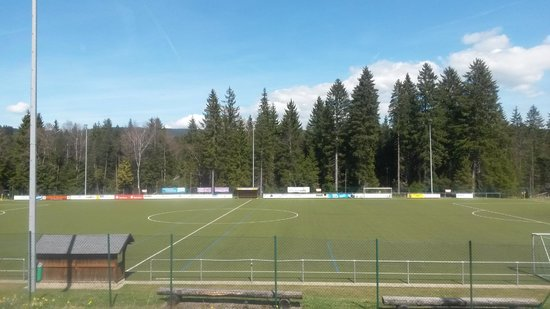 Titisee: en route from freiburg