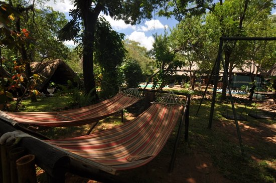 Victoria Falls Backpackers: Relax
