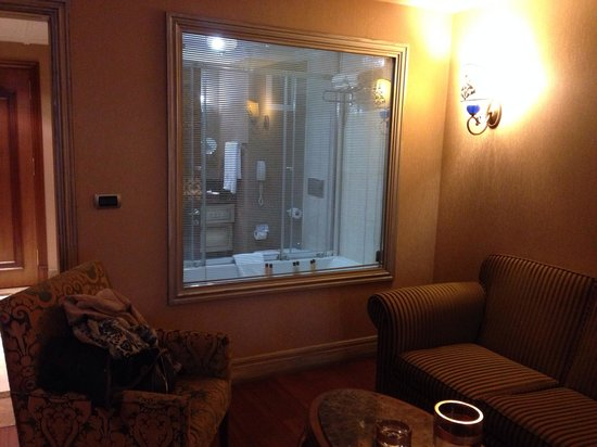 The Central Palace Otel: Part of the exclusive room. The blinds of the bathroom window can be closed of course!