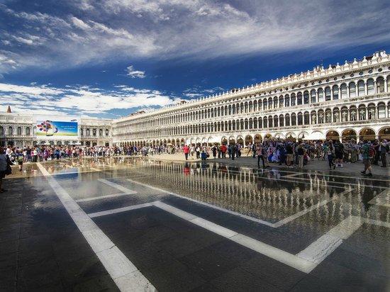 Piazza San Marco (Place St Marc) : Старые и новые прокурации