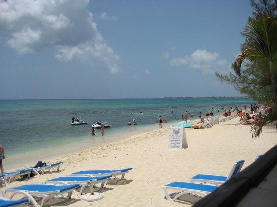Surfside Beach Restaurant & Bar: Spiaggia vista dal terrazzino del locale