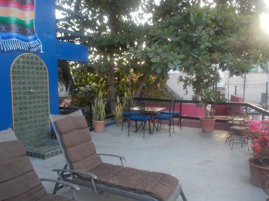 Siesta Suites: Sun Deck