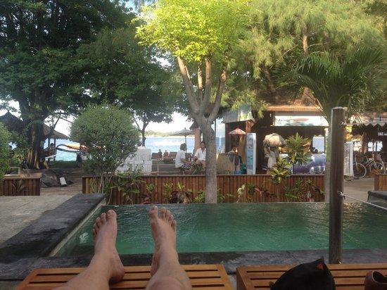 Kelapa Kecil : Lounging at the infinity pool