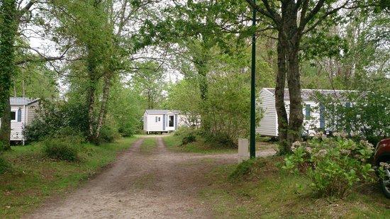 Locronan Photo de Camping Bois de Pleuven, Finist u00e8re TripAdvisor # Camping Bois De Pleuven