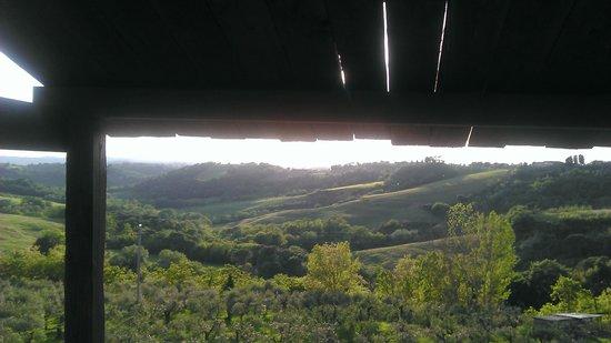 La Lombricaia: Vista dalla casetta sull'albero.