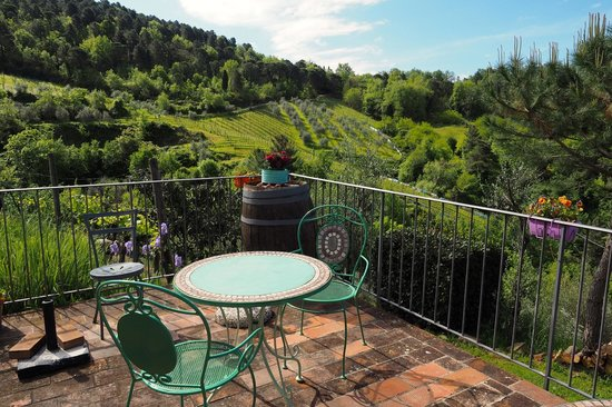 Poggio all'Olmo: View of vineyards from common terrace area