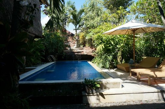 Aahh Bali Bed & Breakfast : Nice swimming