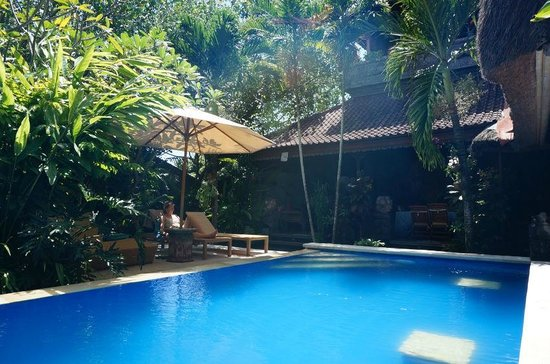 Aahh Bali Bed & Breakfast: Relaxing and swimming