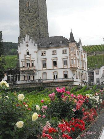 Rheingau Wine Museum Broemserburg Castle : Замок