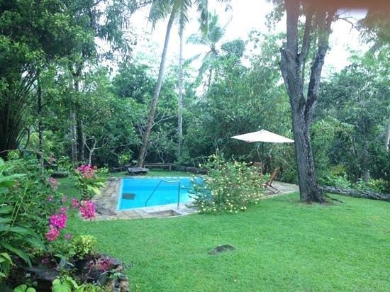 Templeberg Villa: surrounded by lush greenery