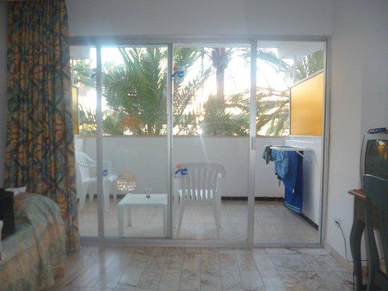 OLA Hotel Panama: The dreaded Palm tree