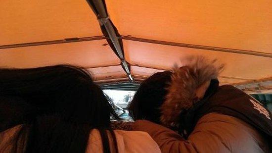 Matsue Horikawa Pleasure Boat : こんな低いところを通ります!