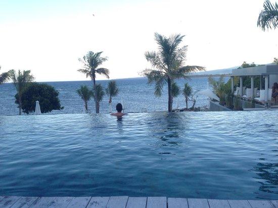 The Lombok Lodge : Infinity pool