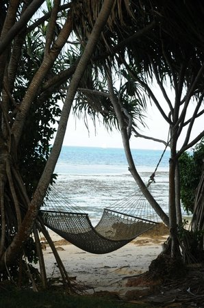 Fumba Beach Lodge: View of beach from lodge