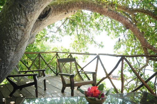 Fumba Beach Lodge: Viewing platform at the top of the mammoth baobab