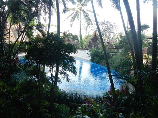 Kupu Kupu Barong Villas and Tree Spa: La piscine vue de la chambre