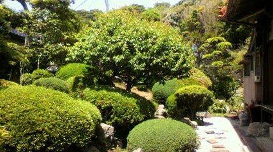 Daijiji Temple: 庭