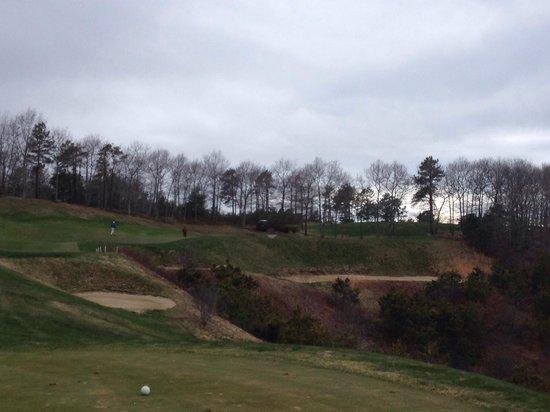 Waverly Oaks Golf Club : Crazy Par 3 17th hole