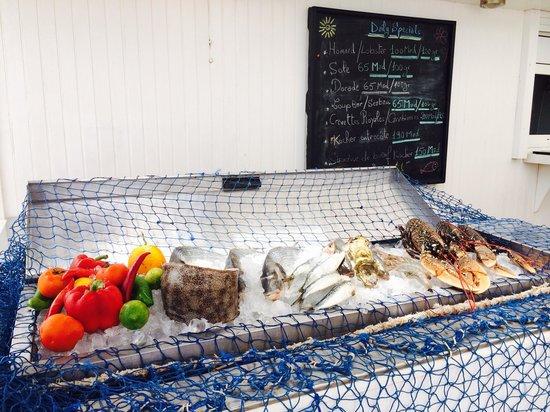 Mazagan Beach & Golf Resort: Pesce fresco al ristorante sulla spiaggia