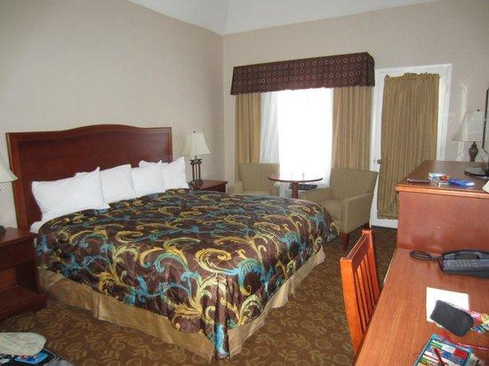 Tropicana Inn & Suites: camera