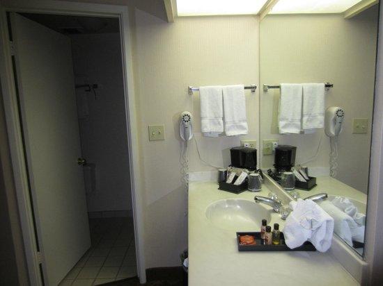 Tropicana Inn & Suites: antibagno