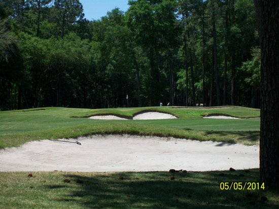 George Fazio Golf Course: Hole # 15