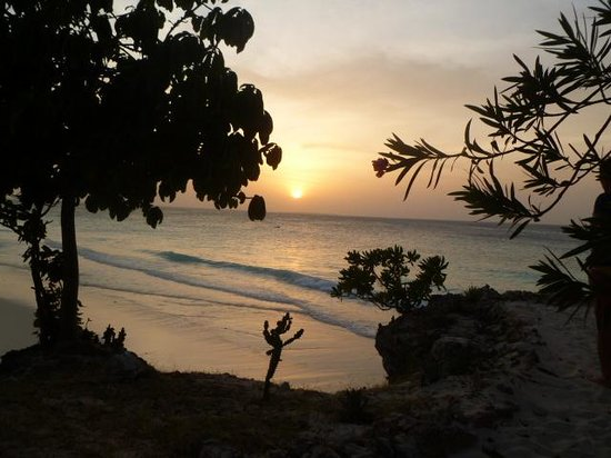 My Blue Hotel: tramonto zanzibar