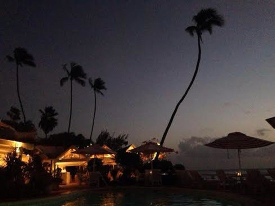Cobblers Cove at Night