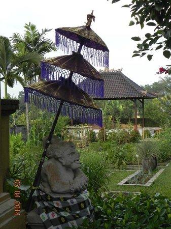 Mandala Desa : Gardens