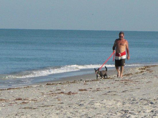 Pearl Beach Inn: Long walks on beach