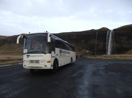 Reykjavik Excursions: Waterfall Vist