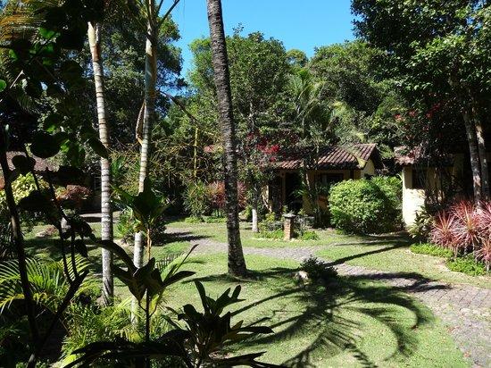 Pousada Porto do Meio : Jardim