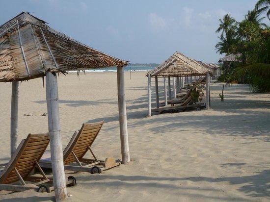 The Palm Beach Resort: ビーチ
