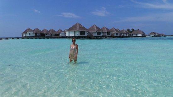 Four Seasons Resort Maldives at Kuda Huraa: Water Bungalow