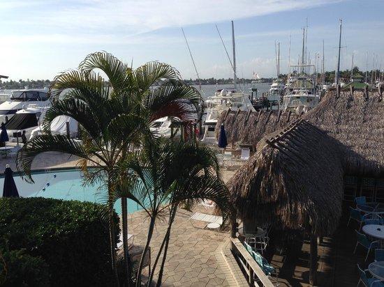 Cove Inn on Naples Bay : Vue de la chambre