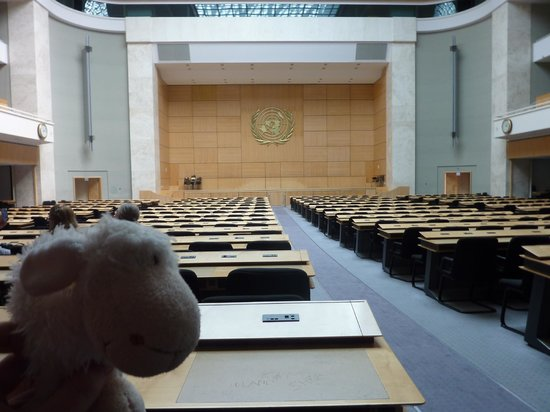UNOG - Palais des Nations: Shaun in another posh conference room