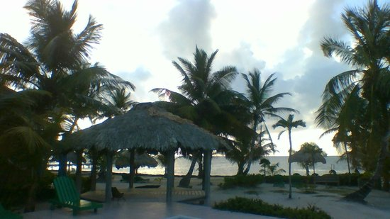 White Sands Cove Resort : Beautiful Morning