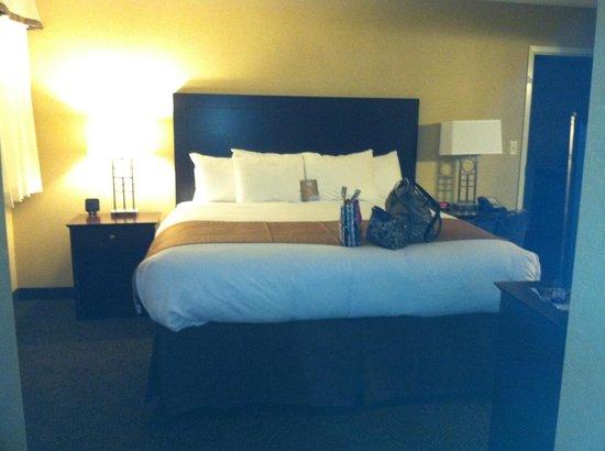 Comfort Inn & Suites : Comfy king bed