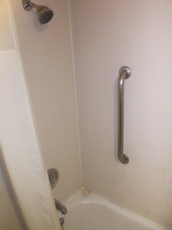Quality Inn - Flagstaff / East Lucky Lane : Shower room 155.
