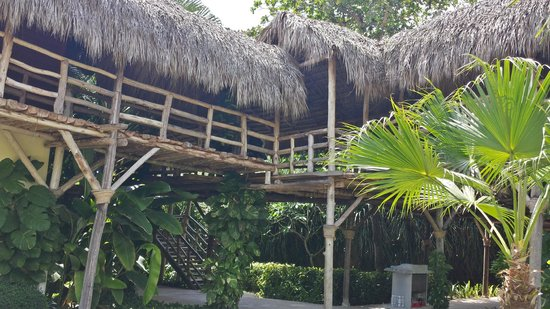 Zoetry Agua Punta Cana : hotel
