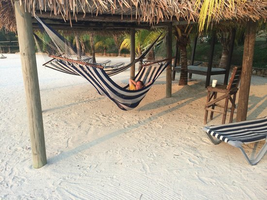 Turquoise Bay Dive & Beach Resort: Hammocks!