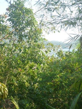la Cigale: la vue depuis la Garden Villa