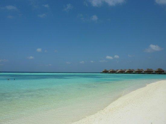 Vakarufalhi Island Resort : Wasservillen wär es mag ;-)
