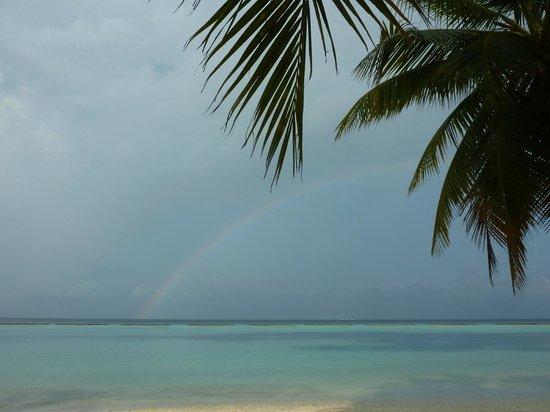 Vakarufalhi Island Resort : Regenbogen