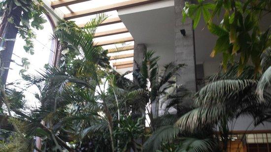 Princesa Yaiza Suite Hotel Resort: vistas