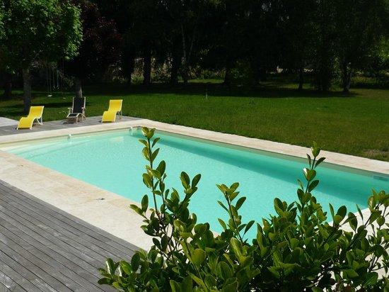 Manoir de la Vigneraie: La piscine