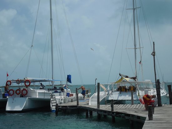 Samba Catamarans: catamarans