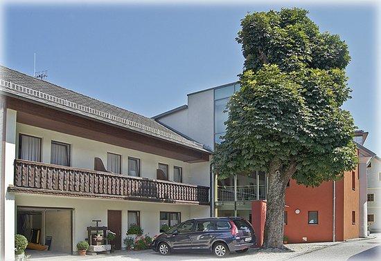 Gasthof-Pension Schuetz: Schattenspendender Kastanienbaum