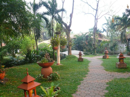 Secret Garden Chiang Mai: 庭