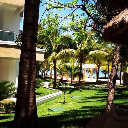 Hotel Riu Caribe : Amazing views. Paradise :))
